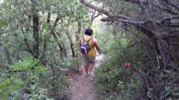 Descens del turó de Sant Miquel pel corriol